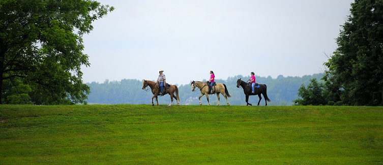 Saddle Up at Pleasant Hill Lake Park!